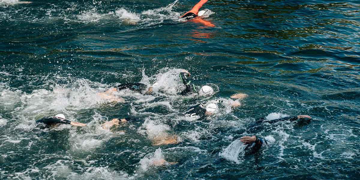 Waitangi day swimmers